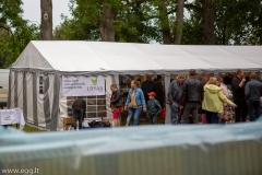 pauksciu_festivalis-155