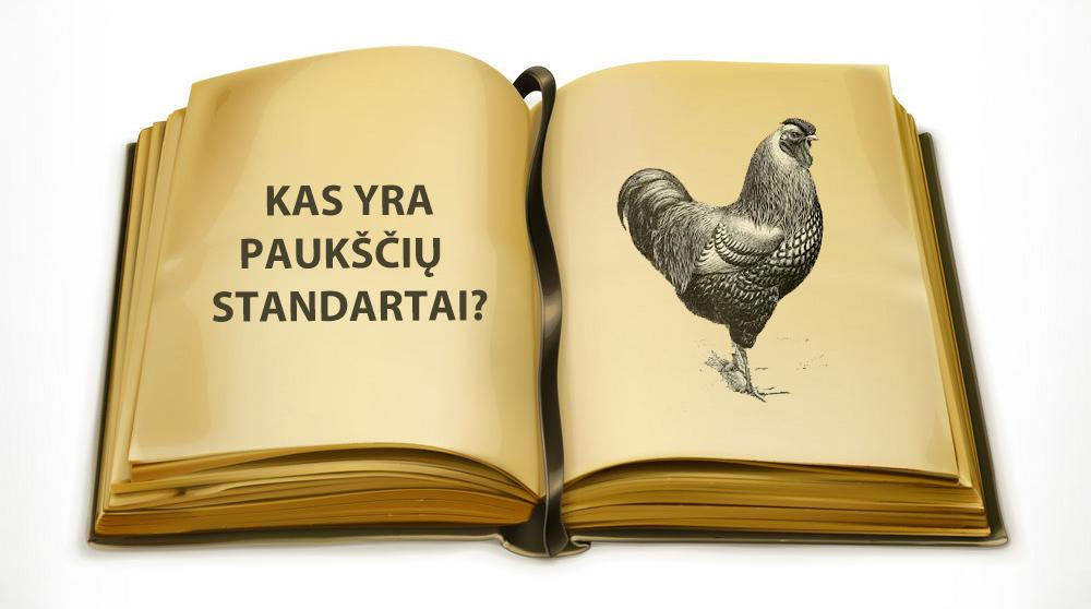 Kas yra paukščių standartas ir vertinimo taškai?