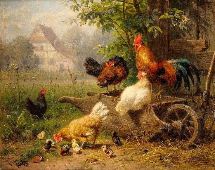 Sauliaus Jasionio gyvuojančios mintys internete apie paukščius ir sodybas